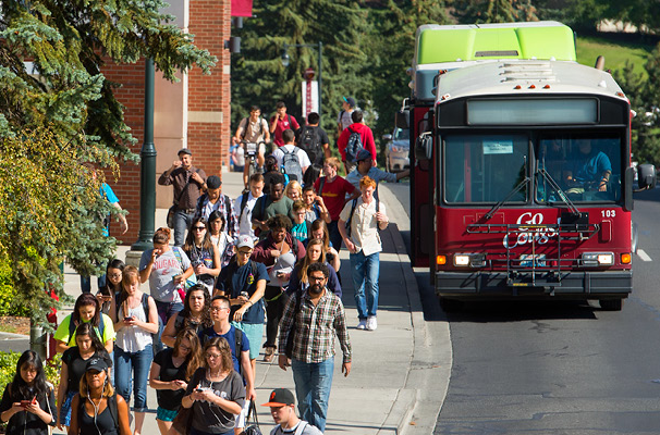 buses on WSU campus